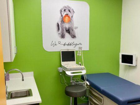 Kidz Cardiology exam room
